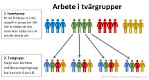 tvärgrupper instruktion till elever